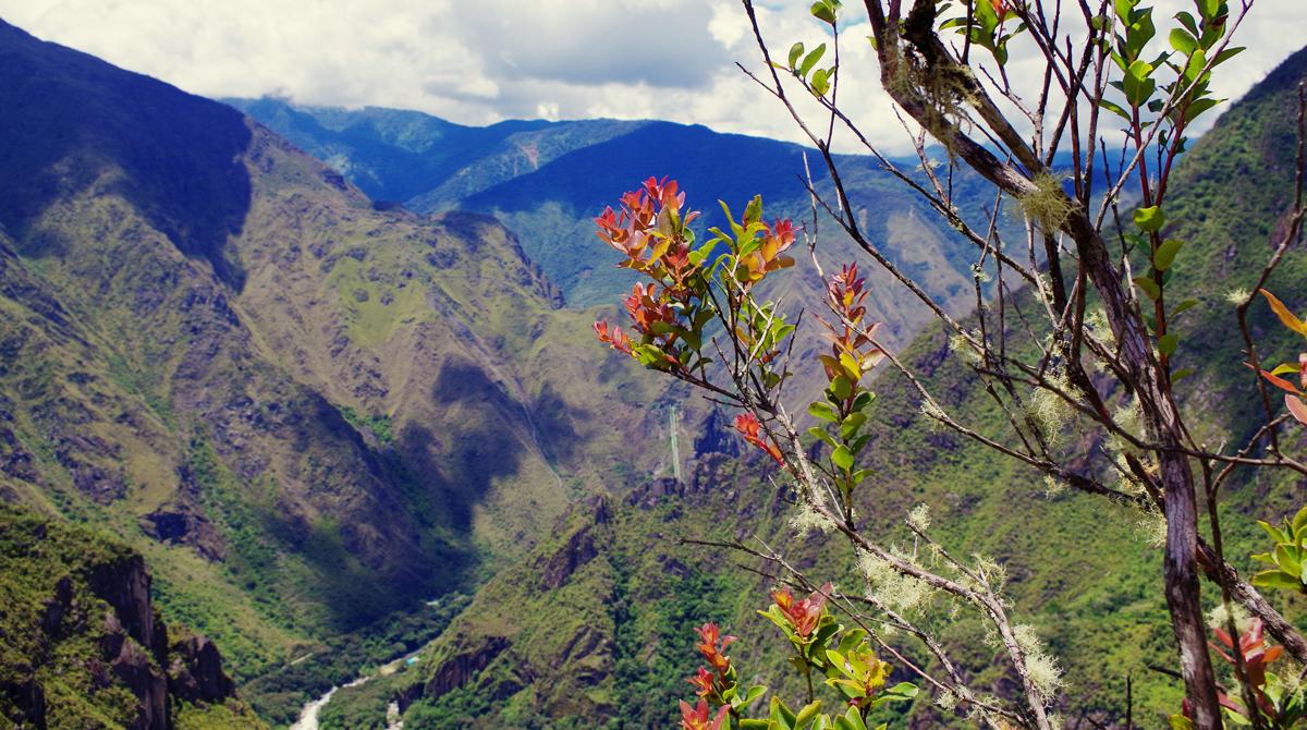 Guía para viajar por fiestas patrias Perú